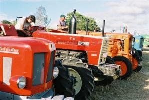 Les tracteurs se préparent pour la parade finale cheval