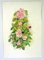 Rose « Comte de Chambord », par Evelyne Bouvier,  5°prix